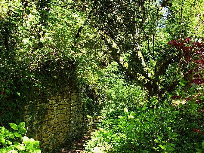 Interior del jard n bot nico de santa catalina for Cementerio jardin del mar