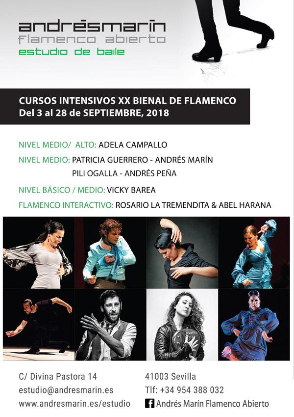 Imagen 2 de 3 - Carteles cursos Baile Flamenco