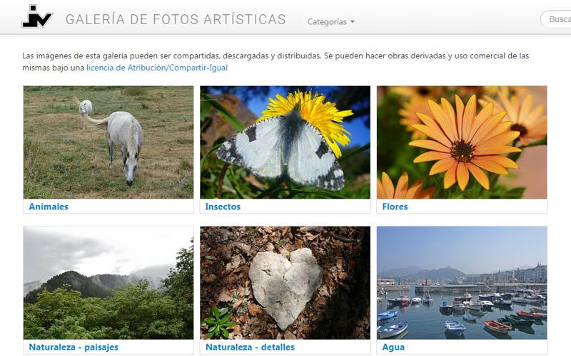 Imagen 1 de 8 - Galería de Fotos Artísticas